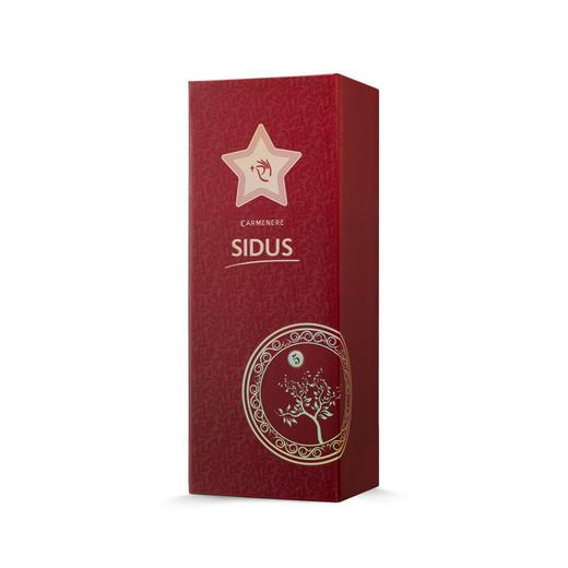 星得斯树藤系列(5)红葡萄酒 商品图2