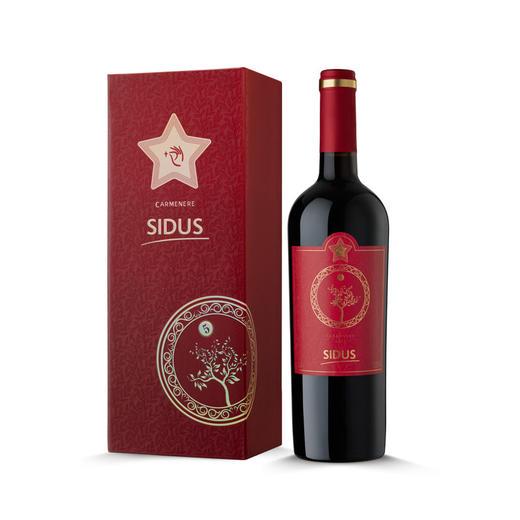 星得斯树藤系列(5)红葡萄酒 商品图0