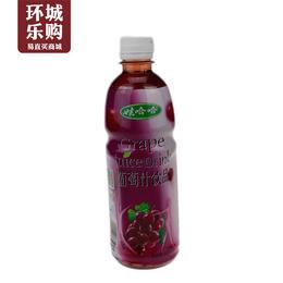娃哈哈葡萄汁500ml-884369