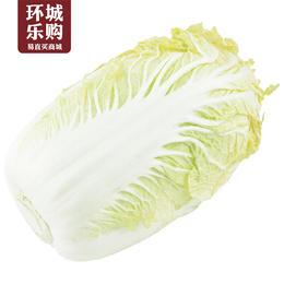 白菜一份2kg-518046