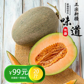 新疆西州蜜哈密瓜20斤装(3-4个) 预售【预计7月中旬发货】