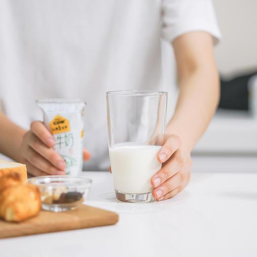 【荐】认养一头牛纯奶 定制款 200ml*12盒*1箱 商品图4