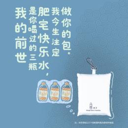 3只回收塑料瓶!人民网 x P.E.T 真·环保面料无染色 钥匙扣随身购物袋 超小超便携【可大宗定制】