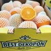【半岛商城】进口澳洲丑橙 7斤装 约16个果左右 全国包邮 商品缩略图1