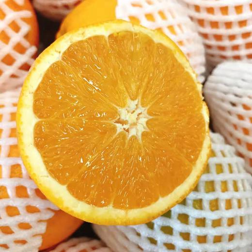 【半岛商城】进口澳洲丑橙 7斤装 约16个果左右 全国包邮 商品图2