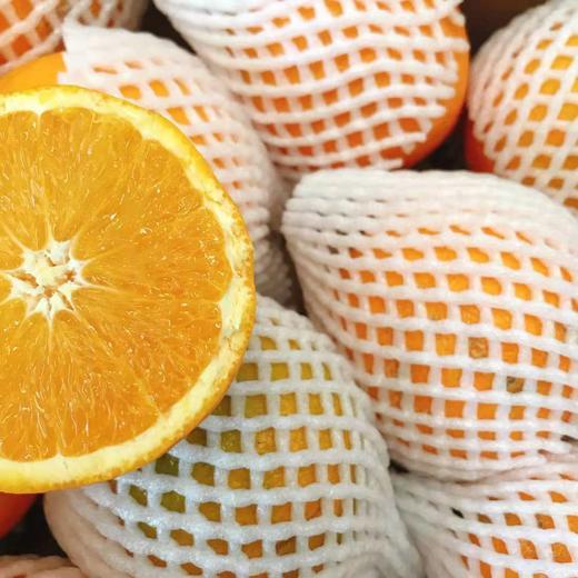【半岛商城】进口澳洲丑橙 7斤装 约16个果左右 全国包邮 商品图3