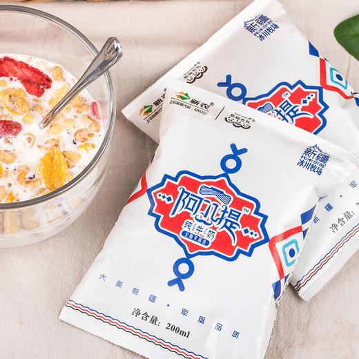新疆新农·阿九提纯牛奶  冰川原生牧场  新疆好奶  一口难忘200ml*16袋 商品图2