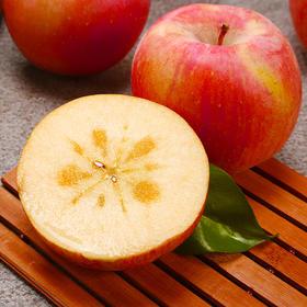 新疆阿克苏 苹果 冰糖心苹果 细腻红润 颜色鲜亮 口感清甜 新鲜采摘 应季水果 苹果