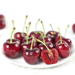 【精品鲜果】智利进口 新鲜水果 Sebastian车厘子SJD(双勾加大果)5斤装