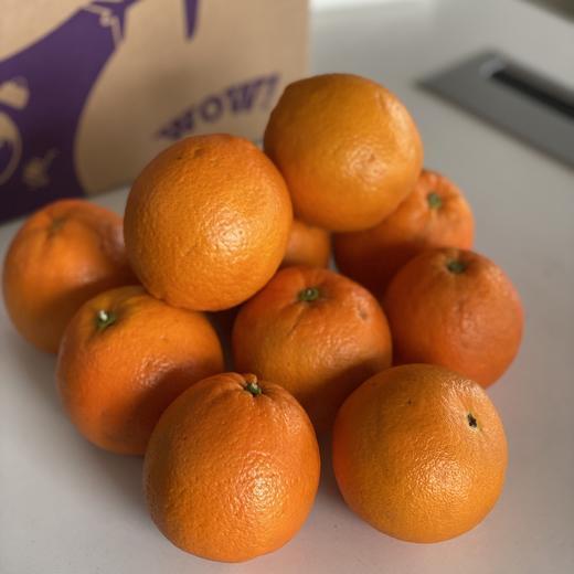 【三环之内免费配送】19.9元抢伦晚橙子9.5斤! 商品图0