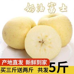 【买3斤送2斤】山东烟台奶油黄金富士5斤装