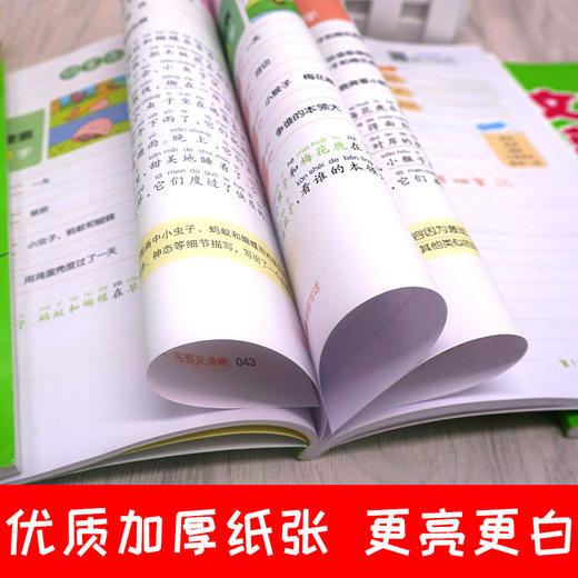 【开心图书】1-2年级从20字到200字看图写话+日记起步+作文起步共3册+1册跟着笨狼学作文 商品图7