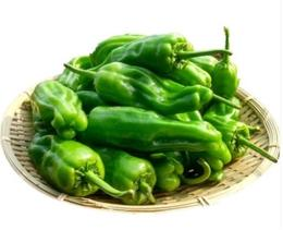 【时令蔬菜】青椒250g±20g