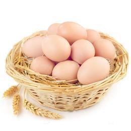 丹江散养土鸡蛋