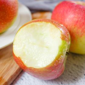 嘎啦苹果 皮薄多汁 现摘现发 清甜爽口 原生态种植 5斤/9斤装