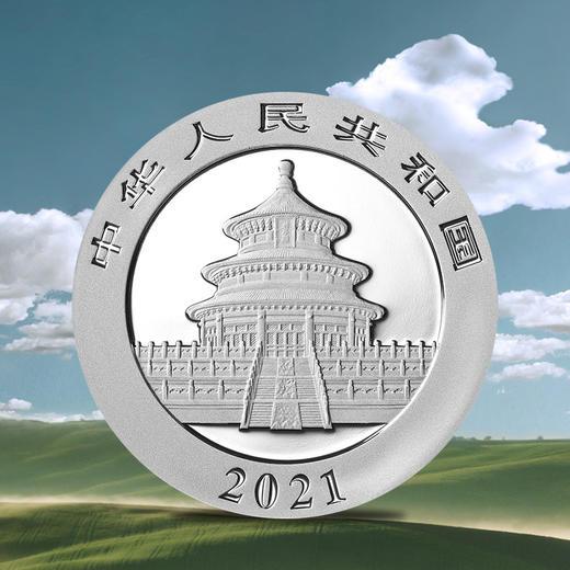 【初铸版】2021年熊猫30克银币·封装满分版 商品图3