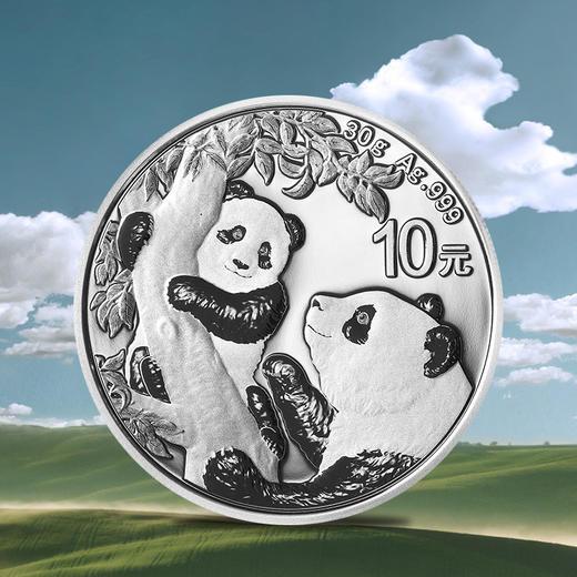 【初铸版】2021年熊猫30克银币·封装满分版 商品图2