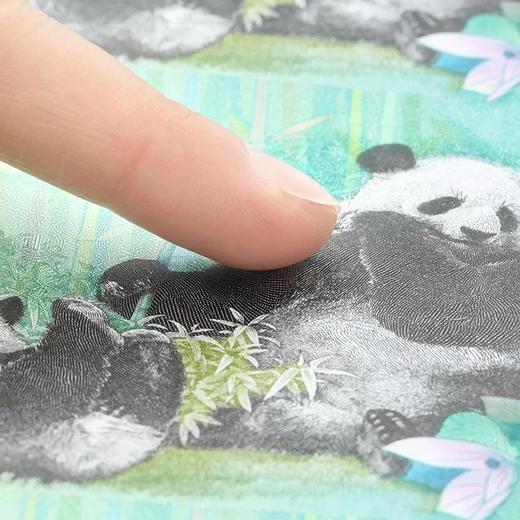 《大熊猫走向世界150周年》纪念券 商品图3