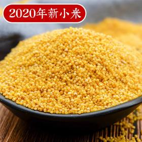 2020年新小米 陕北米脂小米 农家月子米 现磨现发 5斤装