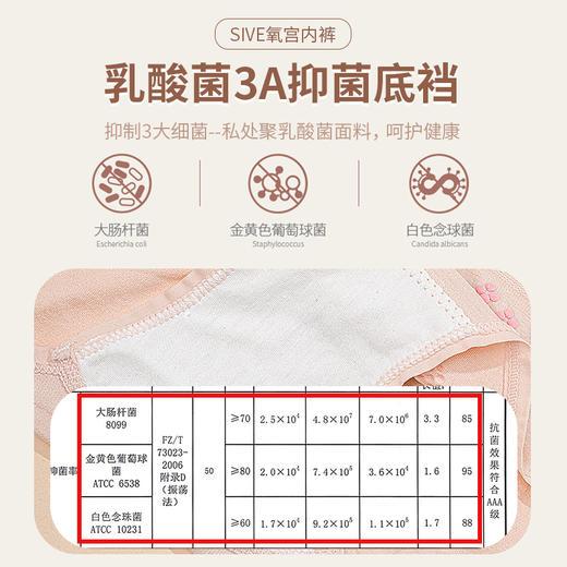 【第2组半价】SIVE乳酸菌氧宫裤 磁疗暖宫 高腰收腹 亲肤柔软 3条/组 商品图4