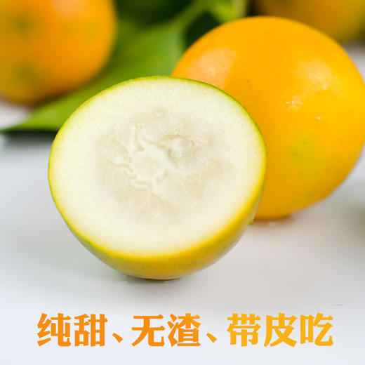 竹山当季新鲜水果脆甜金桔 商品图0