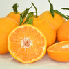 农道大叔精选   春见耙耙柑 肉质脆嫩 多汁 清甜 现摘生鲜水果 商品缩略图5
