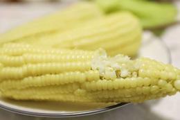 【半岛商城】甜糯奶油玉米速冻版 10穗