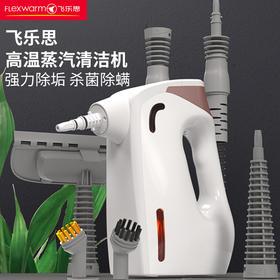 飞乐思高温蒸汽清洁机家用厨房油烟机高压清洗机家电消毒