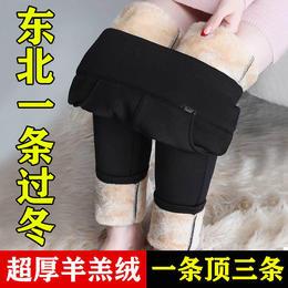 PDD-YZM201223新款时尚气质高腰加绒加厚保暖小脚仿羊羔绒裤TZF