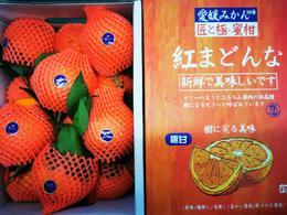 【半岛商城】爱媛匠心极礼盒装 净重约7.5斤 约12枚