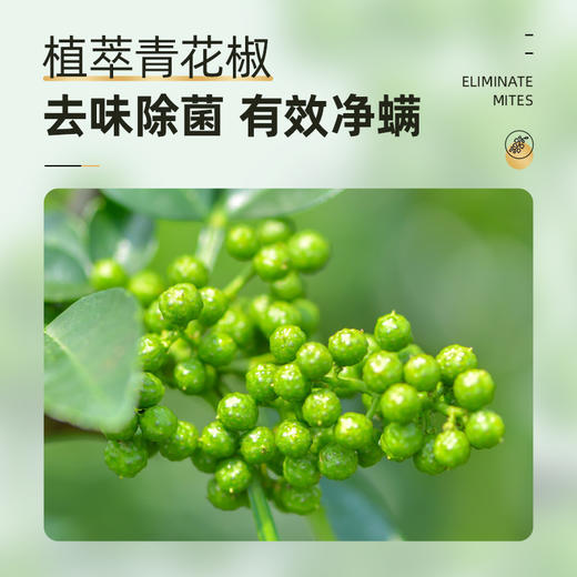 【买4送3】小树家青花椒除螨喷雾 加入青花椒植萃技术 有效净螨 去味去菌 250ml/瓶 商品图3